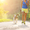 Know the Facts: How Much Exercise Does a Dog Need Everyday?