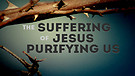 Magnificent Christ - Deliverance Through His Suffering