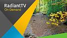 RadiantTV Episode 170905